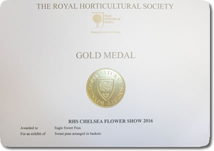 Our Chelsea Gold Medal awarded at the Chelsea Flower Show 2016