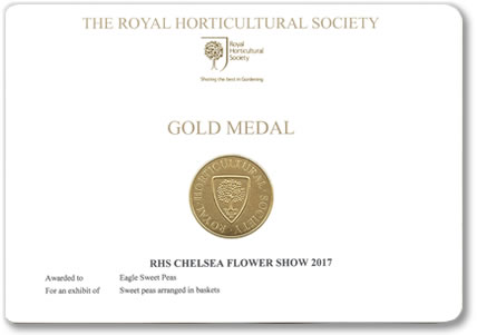 Our Chelsea Gold Medal awarded at the Chelsea Flower Show 2017