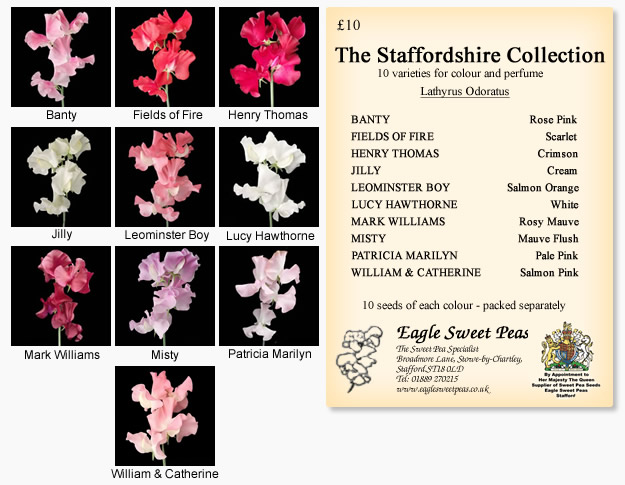 Staffordshire Seed Collection